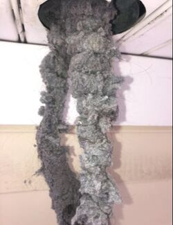 Lint taken out of a dirty dryer vent